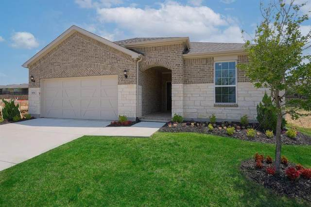 1004 Old Glory Drive, Little Elm, TX 76227 (MLS #14577973) :: Real Estate By Design