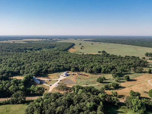 13380 Fm 412, Annona, TX 75550 (MLS #14578754) :: All Cities USA Realty