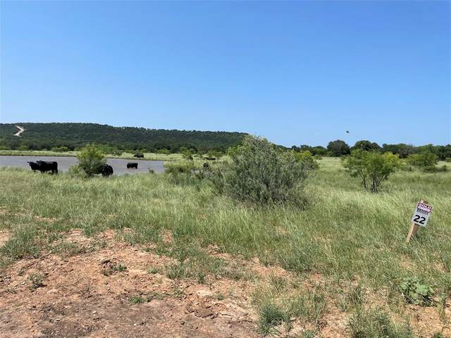 Lot 22 Brazos Mountain Ranch, Mineral Wells, TX 76067 (MLS #14605284) :: Robbins Real Estate Group