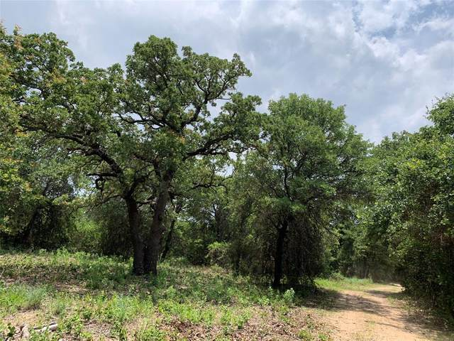 12732 County Road 469, Baird, TX 79504 (MLS #14606468) :: The Russell-Rose Team