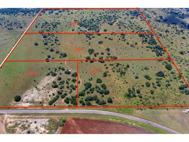 Lot 3 County Road 202, Brownwood, TX 76801 (MLS #14620132) :: Real Estate By Design