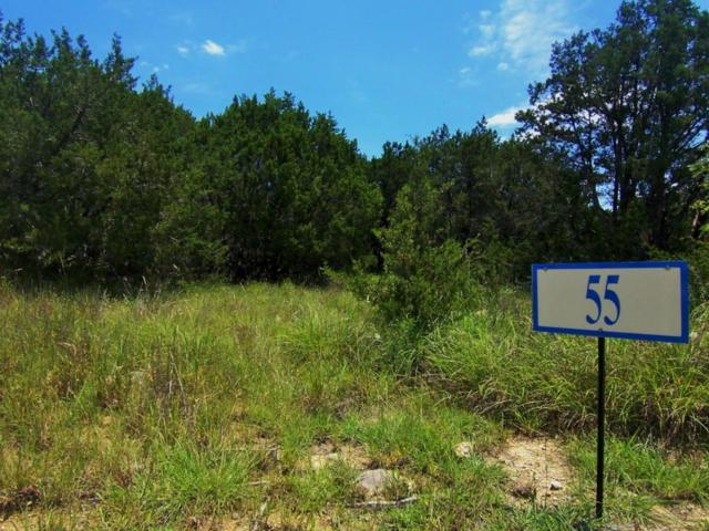 1001 Scenic Drive, Possum Kingdom Lake, TX 76449 (MLS #13166851) :: Real Estate By Design