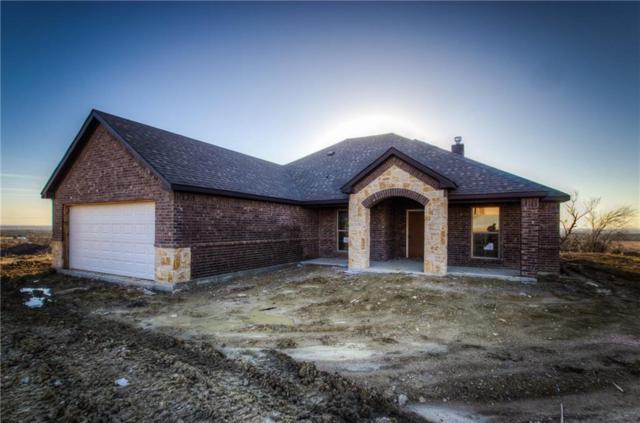 119 Timber Valley Court, Weatherford, TX 76085 (MLS #13631291) :: Team Hodnett