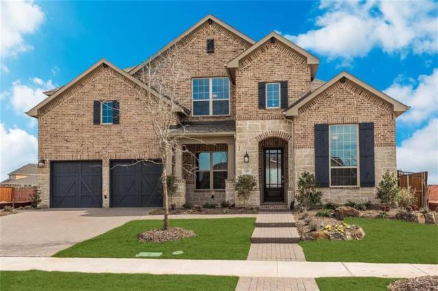 16540 Heartleaf Road, Frisco, TX 75033 (MLS #13674805) :: Team Hodnett