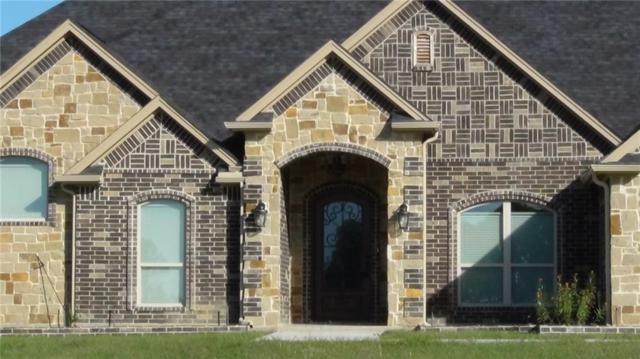 1710 Right Field Court, Cedar Hill, TX 75104 (MLS #13704927) :: Team Hodnett