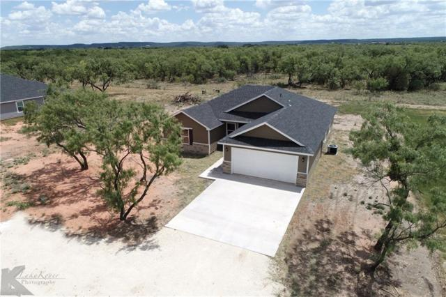 361 Hog Eye Road, Abilene, TX 79602 (MLS #13753003) :: Team Hodnett