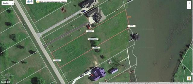 L 99 Open Water Way, Streetman, TX 75859 (MLS #13823167) :: Robbins Real Estate Group