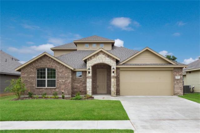1505 Oak Tree Drive, Denton, TX 76209 (MLS #13878663) :: The Chad Smith Team