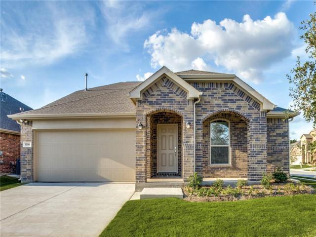 1206 Timberfalls Drive, Anna, TX 75409 (MLS #13889314) :: Team Hodnett