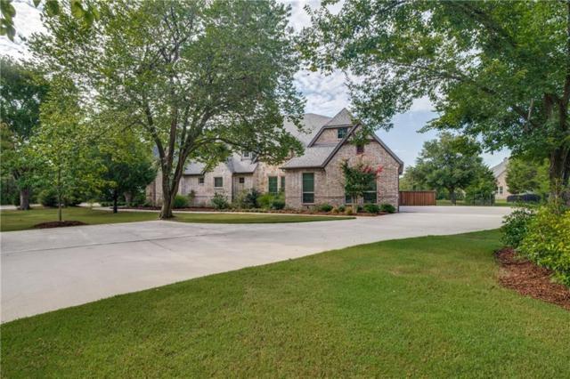 1160 Hart Road, Fairview, TX 75069 (MLS #13889370) :: Frankie Arthur Real Estate