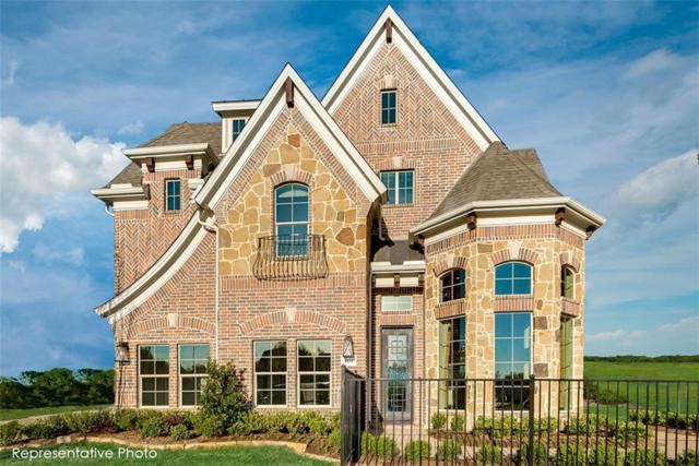 4801 Mckinney Hollow Trail, Mckinney, TX 75070 (MLS #13903259) :: The Real Estate Station