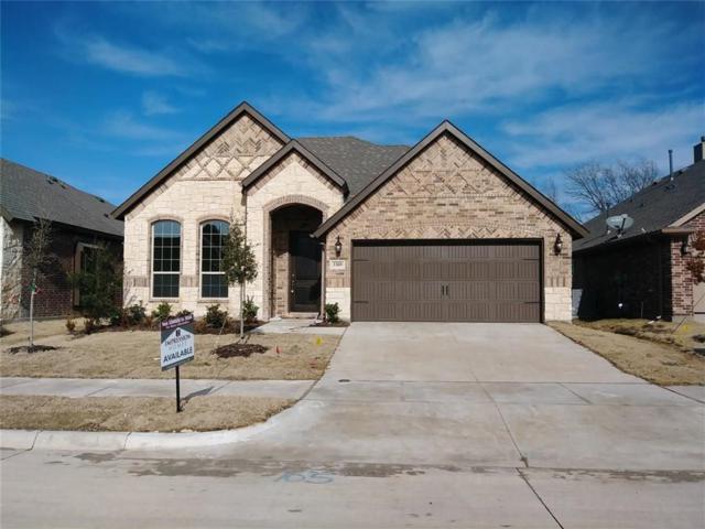 3309 Sequoia Lane, Melissa, TX 75454 (MLS #13953763) :: Team Hodnett