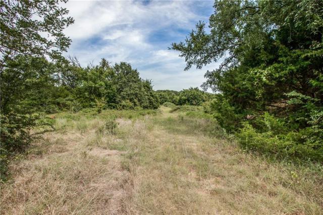 TBD E Fm 455 E, Pilot Point, TX 76258 (MLS #13972656) :: Frankie Arthur Real Estate