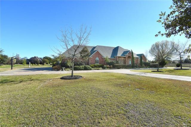 210 Wyndham Court, Fairview, TX 75069 (MLS #14043667) :: The Daniel Team
