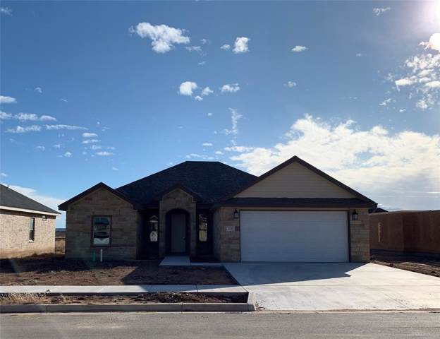 231 Carriage Hills Parkway, Abilene, TX 79602 (MLS #14152892) :: The Chad Smith Team