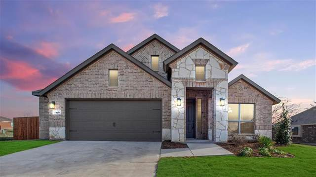 1810 Sunflower Drive, Glenn Heights, TX 75154 (MLS #14207982) :: Potts Realty Group