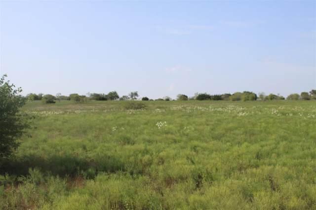 000 Hcr 1103, Blum, TX 76627 (MLS #14269200) :: Craig Properties Group