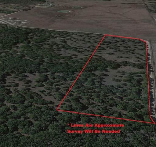 TBD County Road 1117, Cleburne, TX 76033 (MLS #14557641) :: Real Estate By Design