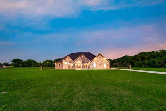 1710 Right Field Court, Cedar Hill, TX 75104 (MLS #13704927) :: Team Hodnett