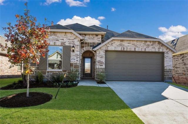 1724 Spoonbill Drive, Little Elm, TX 75068 (MLS #13841247) :: Kimberly Davis & Associates