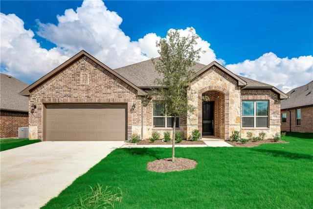 2210 Abela Drive, Waxahachie, TX 75165 (MLS #13843328) :: Magnolia Realty