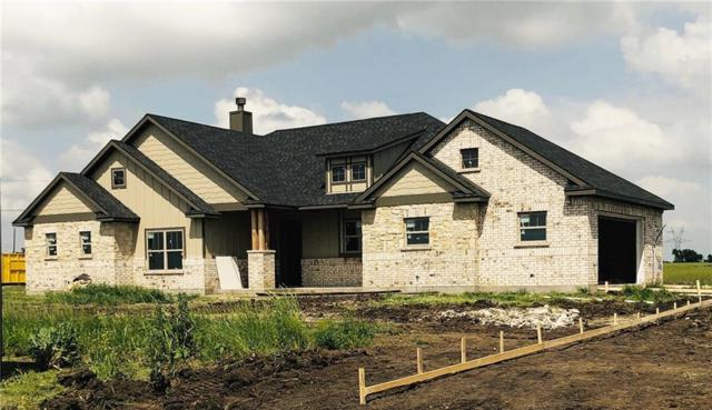7255 Michelle Pointe, Krum, TX 76249 (MLS #13977329) :: The Real Estate Station