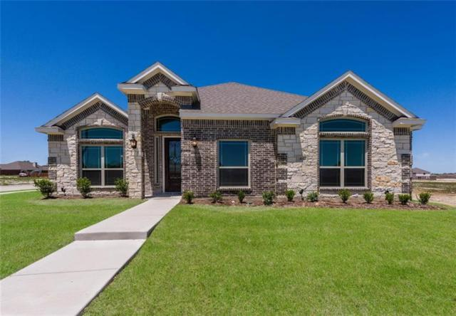 411 Wintergreen Drive, Waxahachie, TX 75165 (MLS #13994683) :: The Kimberly Davis Group