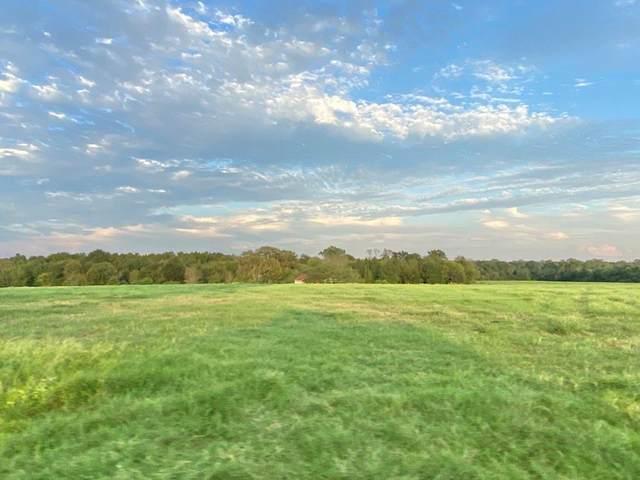 133 Cr 1802, Yantis, TX 75497 (MLS #14435780) :: The Hornburg Real Estate Group