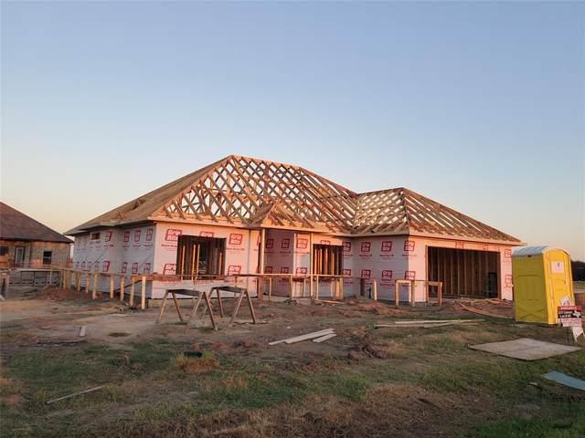 2311 Camryn, Mabank, TX 75147 (MLS #14441138) :: Robbins Real Estate Group