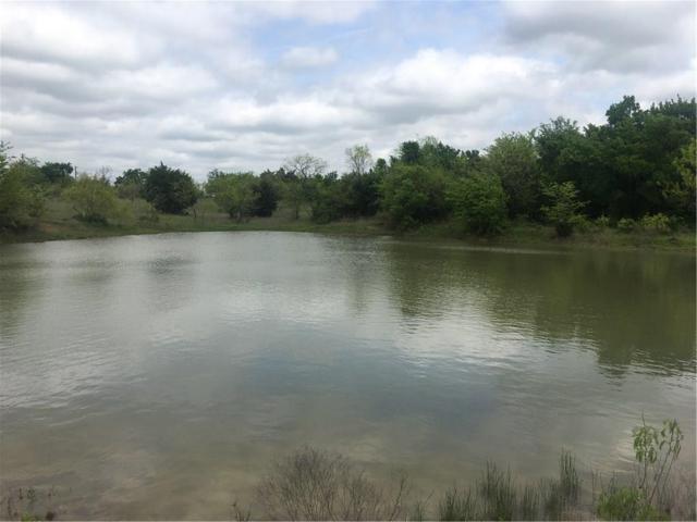 TR 4 Fm 55 Road, Blooming Grove, TX 75102 (MLS #13880323) :: Robbins Real Estate Group