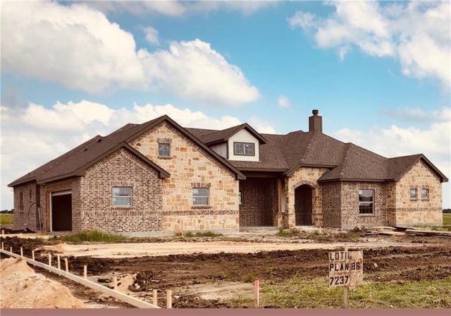 7237 Michelle Pointe, Krum, TX 76249 (MLS #13977364) :: The Real Estate Station