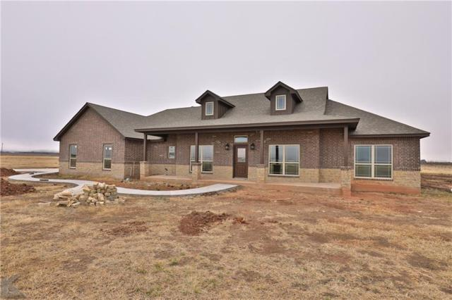 144 Purcell Lane, Tuscola, TX 79562 (MLS #13810102) :: The Real Estate Station
