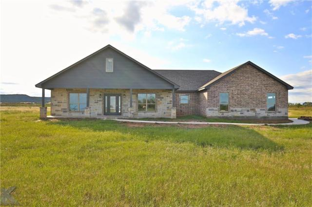 202 Purcell Lane, Tuscola, TX 79562 (MLS #13782458) :: The Paula Jones Team | RE/MAX of Abilene