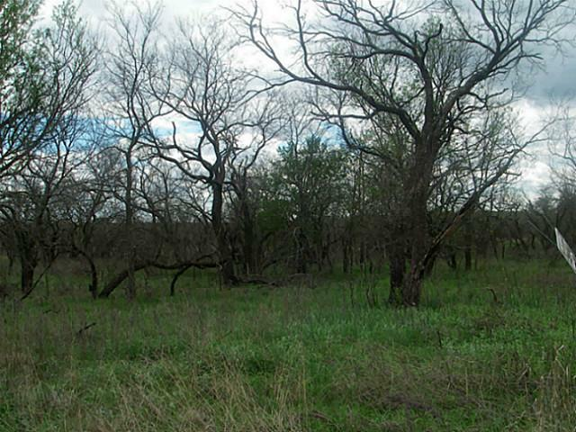 Lot 7 Sleepy Meadow Drive, Runaway Bay, TX 76426 (MLS #11814379) :: RE/MAX Town & Country