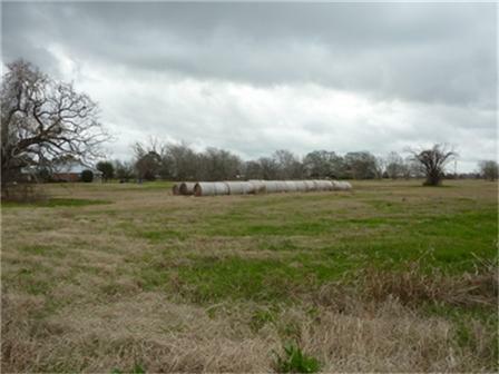 0000 Northline Road, Teague, TX 75860 (MLS #11897519) :: Team Hodnett