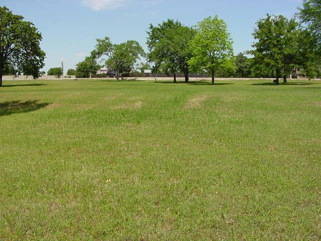 Lot 11 Bayview Circle, Corsicana, TX 75109 (MLS #12114612) :: The Welch Team