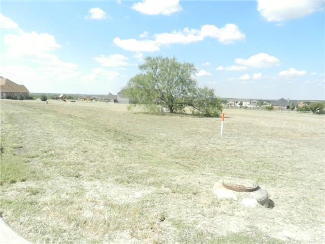 1619 Rohne Drive, Cedar Hill, TX 76065 (MLS #13028173) :: The Marriott Group