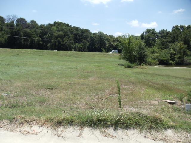 Lot 3 Waterside Court N, Malakoff, TX 75148 (MLS #13202344) :: The Hornburg Real Estate Group