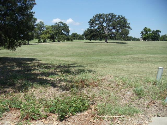 Lot 11 Waterside Court N, Malakoff, TX 75148 (MLS #13202355) :: The Hornburg Real Estate Group