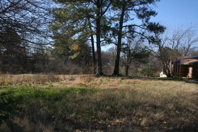 217 Autumnwood Trail, Gun Barrel City, TX 75156 (MLS #13395396) :: The Heyl Group at Keller Williams