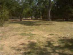 6646 Pecan Street, Frisco, TX 75034 (MLS #13420280) :: Exalt Realty
