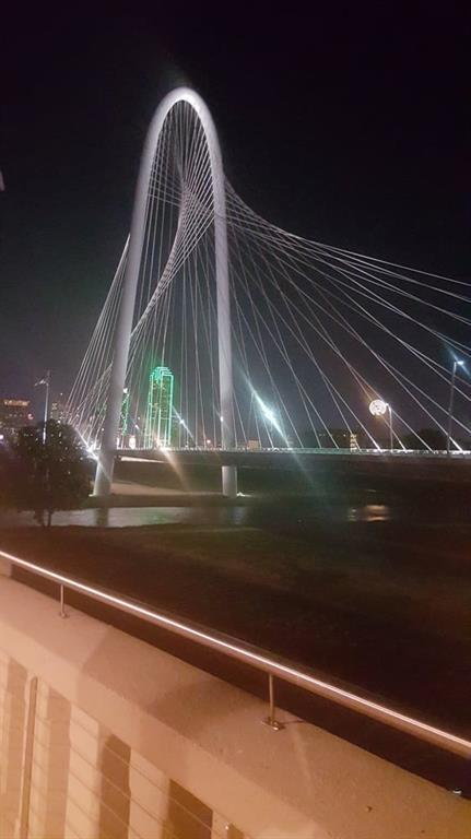 3630 Bickers Street, Dallas, TX 75212 (MLS #13525002) :: Team Hodnett
