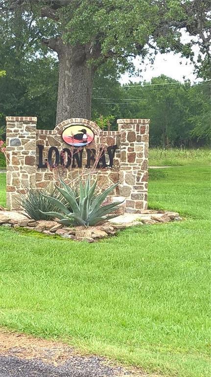 209 Loon Bay Court, Gun Barrel City, TX 75156 (MLS #13590924) :: Team Hodnett