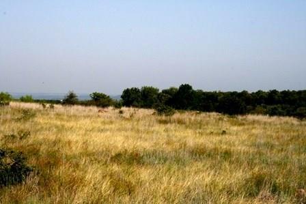 H9 Stagecoach Trail, Gordon, TX 76453 (MLS #13591897) :: The Heyl Group at Keller Williams