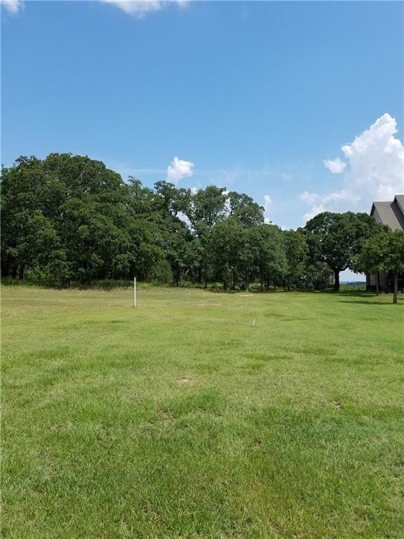 80 Texoma Bluffs Circle, Gordonville, TX 76245 (MLS #13631980) :: The Heyl Group at Keller Williams