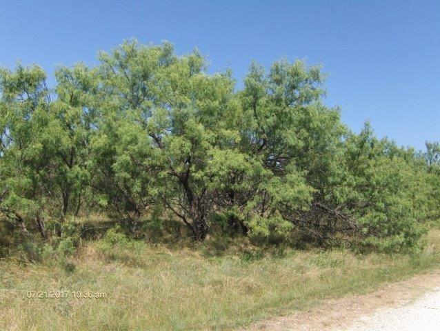 000 Mercers Preserve Road, Comanche, TX 76442 (MLS #13654439) :: Team Hodnett