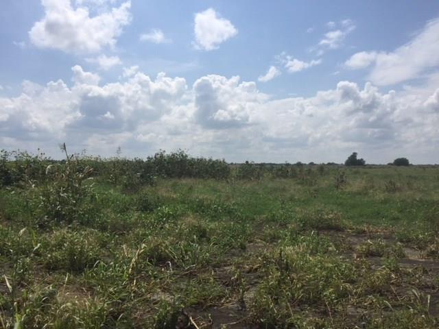Lot1 Forreston Road, Waxahachie, TX 75165 (MLS #13672716) :: Pinnacle Realty Team