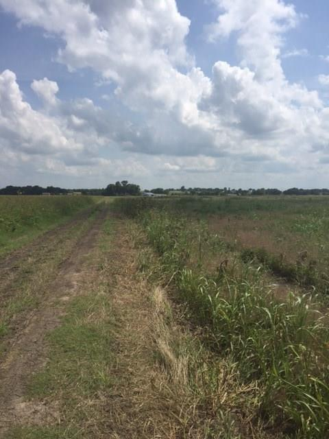 Lot2 Forreston Road, Waxahachie, TX 75165 (MLS #13672724) :: Pinnacle Realty Team
