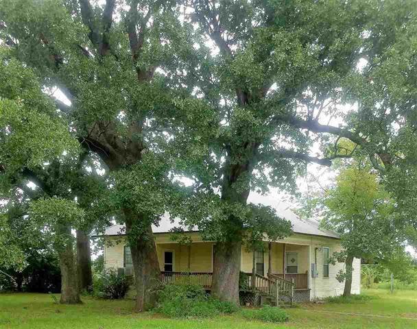 940 W Division Street, Blossom, TX 75416 (MLS #13699034) :: Team Hodnett