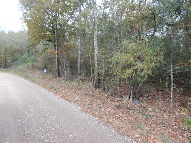 TBD County Road 3774, Cleveland, TX 77327 (MLS #13743776) :: Team Hodnett